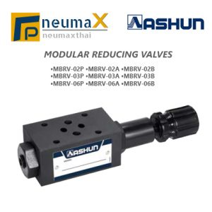ASHUN-MBRV Series โมดูลาร์ Reducing Valves