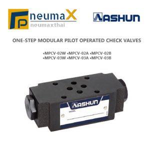 ASHUN-MPCV โมดูลาร์ไพรอทเช็ควาล์ว MPVC Series