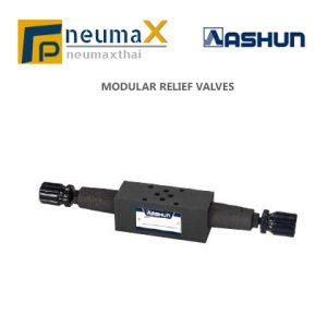 ASHUN-MRV โมดูลาร์ Relief Valve – MRV Series