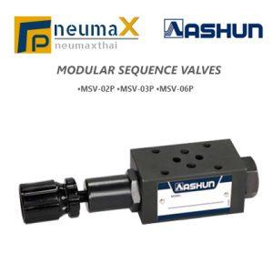 ASHUN-MSV Series โมดูลาร์ Sequence Valves