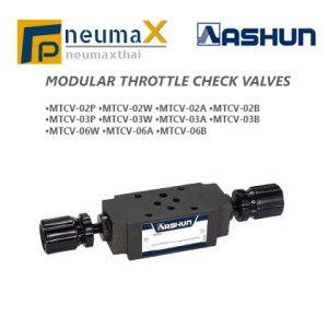 ASHUN-MTCV Series โมดูลาร์ Throttle check valves
