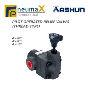 ASHUN-RV Series ไฮดรอลิควาล์ว (Pilot Operated relief valves)-Thread Type
