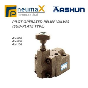 ASHUN-RV Seriesไฮดรอลิควาล์ว (Pilot Operated Relief Valves)-Sub Plate type