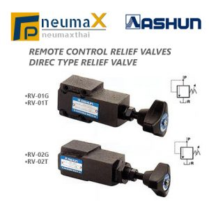 ASHUN-RV Series วาล์วควบคุม Remote Control/Direct Relief valves